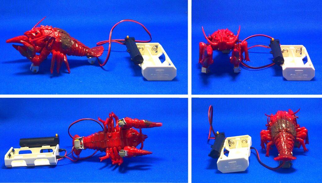 "Marusan plastic model ""Ebirah"" reprint mini plastic model (made by Banprest)"